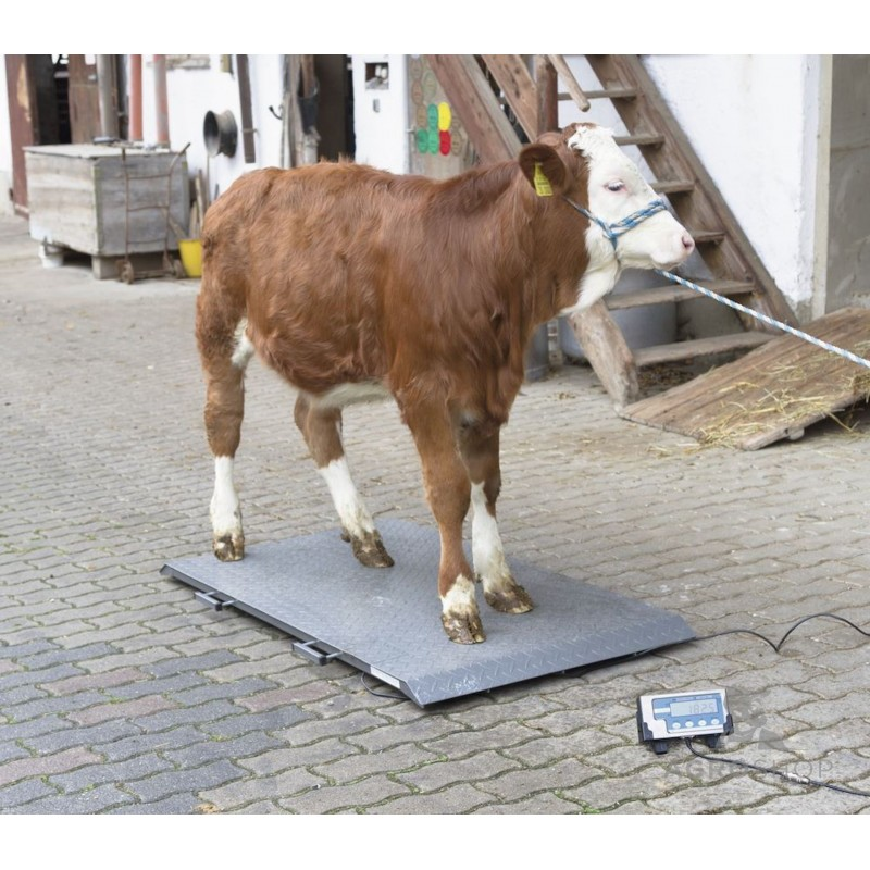 Eläinvaaka Brecknell PS2000 1000kg
